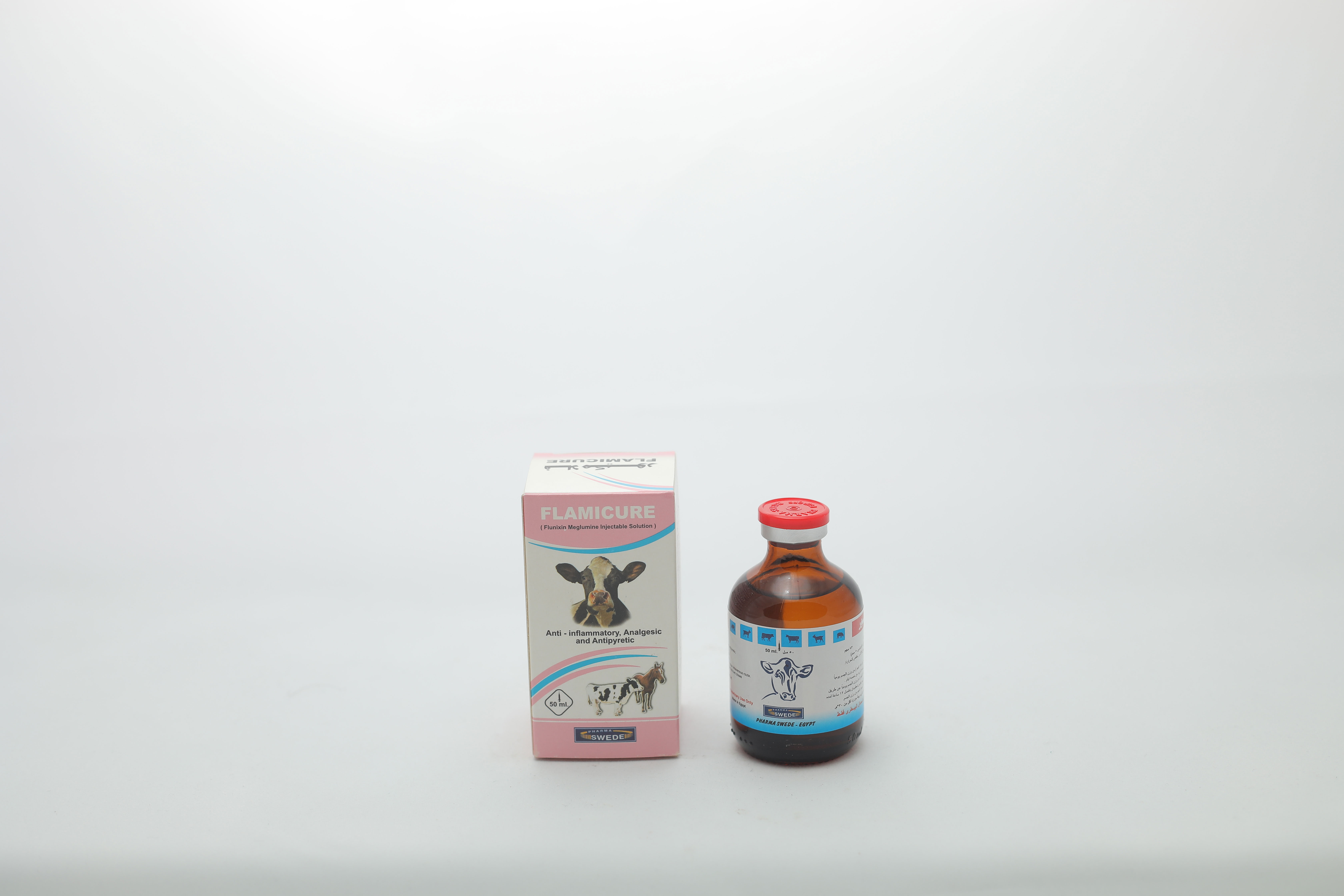 Flamicure injection